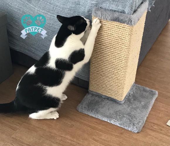 Arranhador gato canto de sofá - corda de sisal