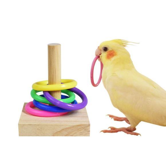 Brinquedo treinamento aves calopsitas, papagaios, loris