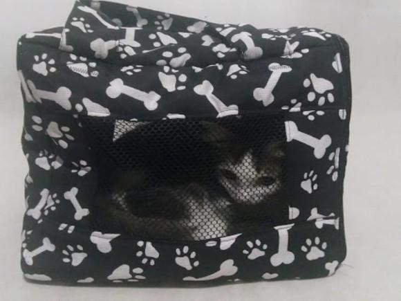 Bolsa transporte para gato e cães de pequeno porte