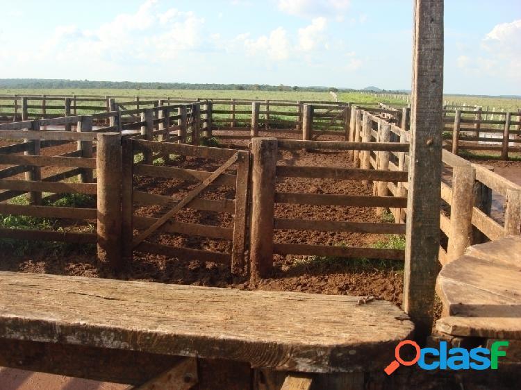 Fazenda 5.130 hectares