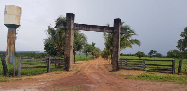Fazenda no tocantins - 500 hectares - em fase de