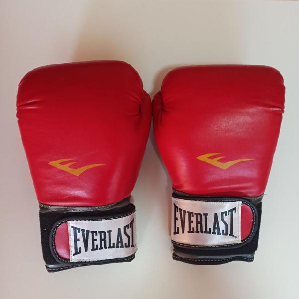 Luva everlast pro style training 14oz