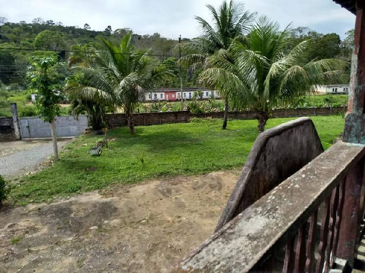 Fazenda de cacau pau brasil