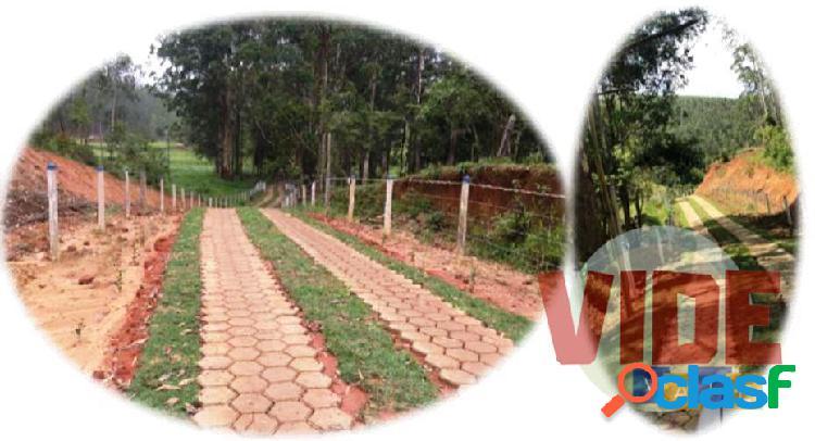 Lagoinha: fazenda, 156 alqueires, casa sede, plantação de eucaliptos, gado