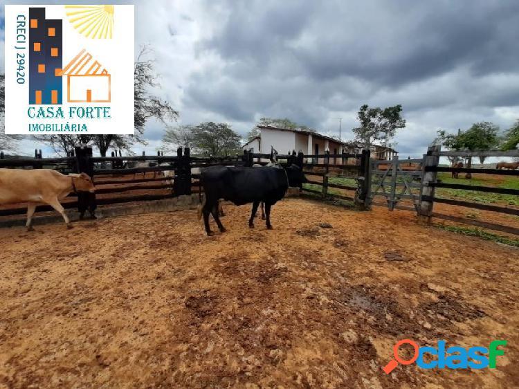 Fazenda em Boa Vista do Tupim, 18 km em Bahia. 2