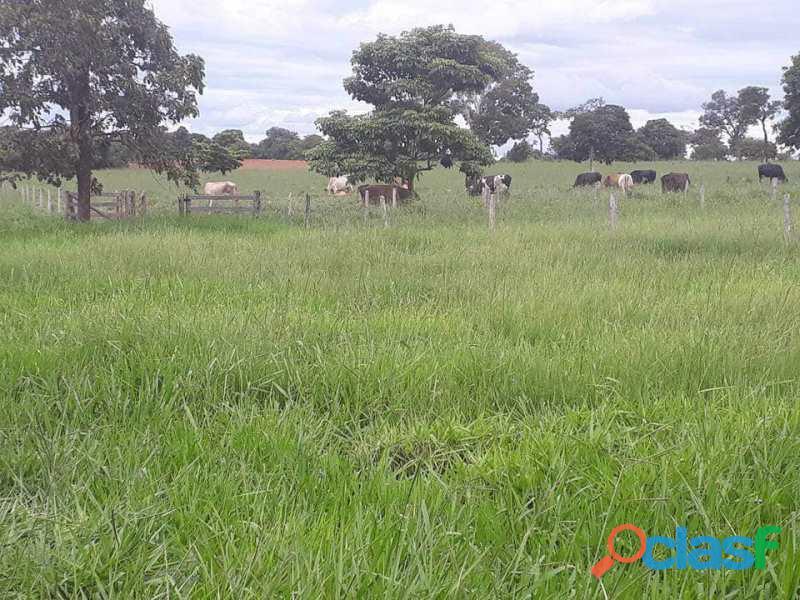 210 Alqs Dupla Aptidão Ótima em Água Logística e Terra Bom Jardim GO