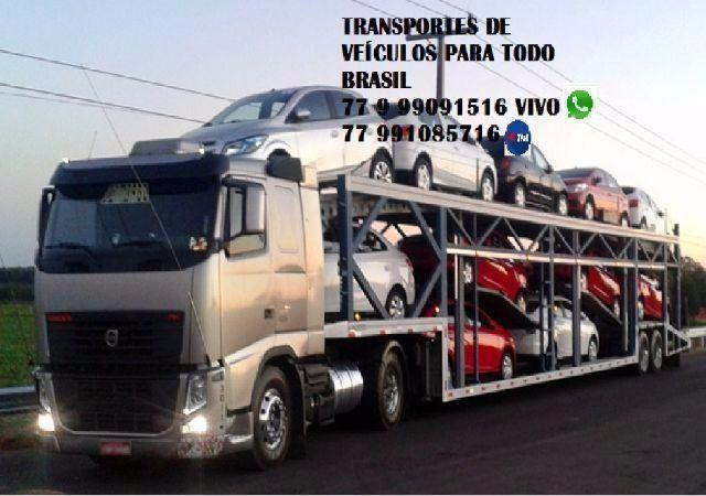 Transporte caminhao cegonha para todo brasil com seguro