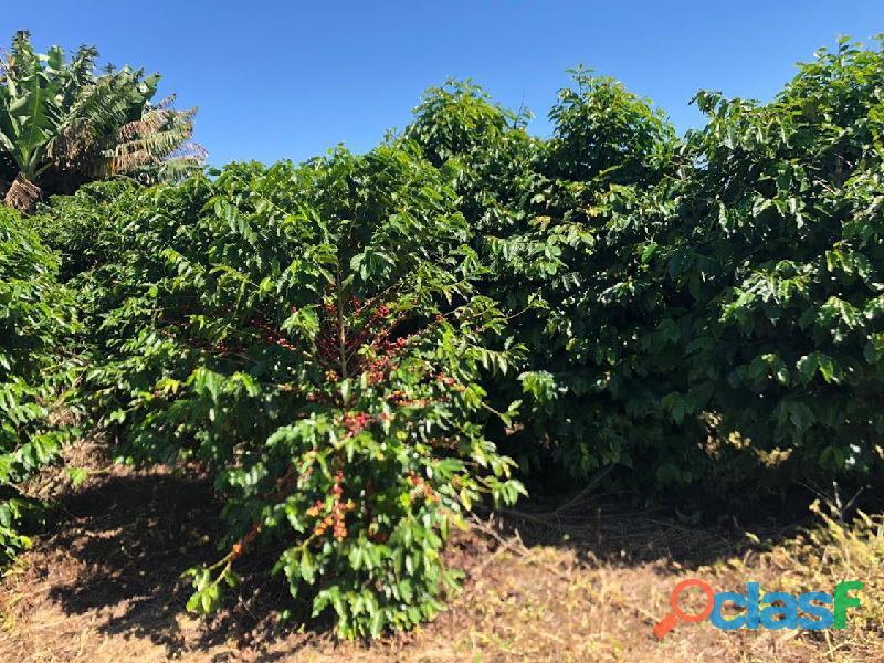 Fazenda Com 30 Alqueires Com 149 Mil Pés De Café Arábica Na Cidade de Caconde 16
