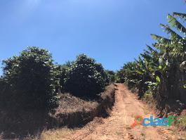 Fazenda Com 30 Alqueires Com 149 Mil Pés De Café Arábica Na Cidade de Caconde 10