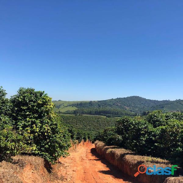 Fazenda Com 30 Alqueires Com 149 Mil Pés De Café Arábica Na Cidade de Caconde 9