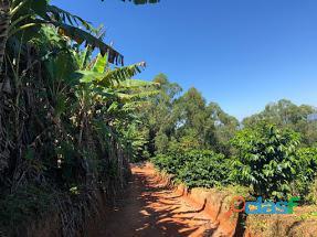 Fazenda Com 30 Alqueires Com 149 Mil Pés De Café Arábica Na Cidade de Caconde 8