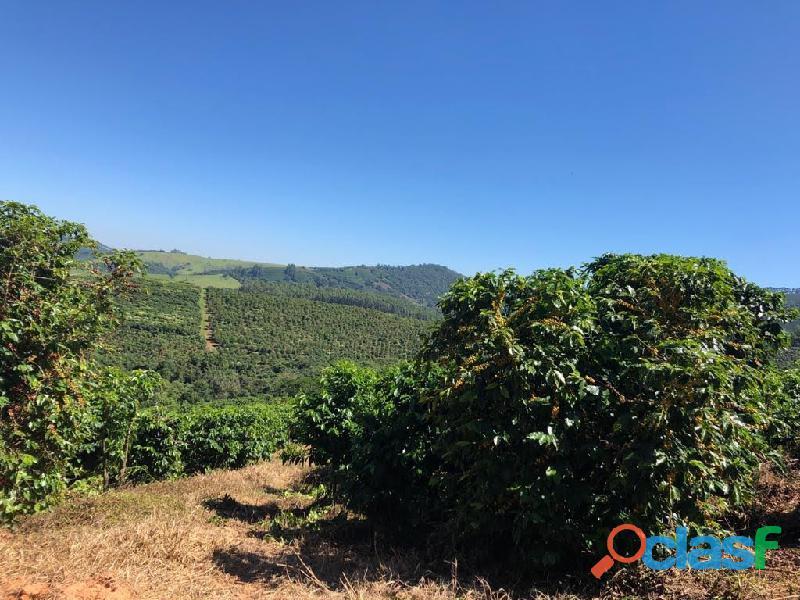 Fazenda Com 30 Alqueires Com 149 Mil Pés De Café Arábica Na Cidade de Caconde 5