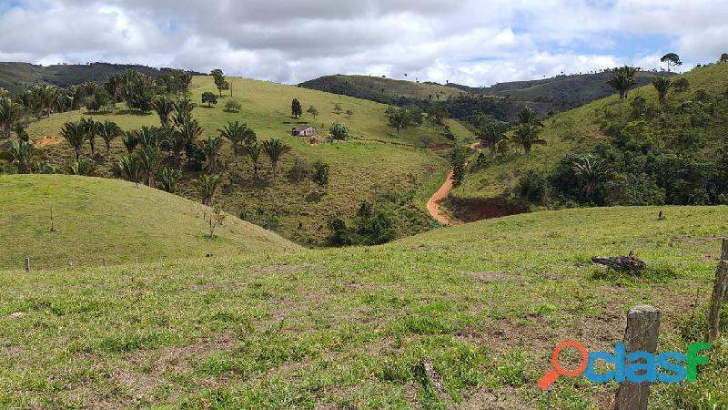 Fazenda em Itamaraju. . A 100 km. Jucuruçu