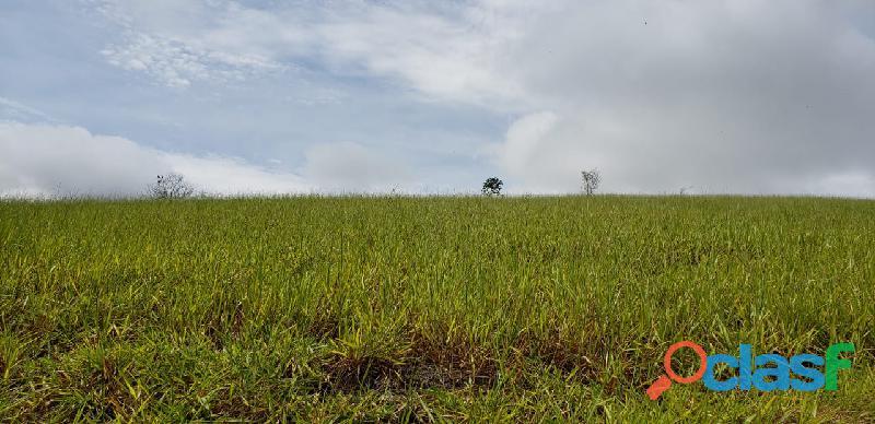 Fazenda em Itamaraju. . A 100 km. Jucuruçu 2