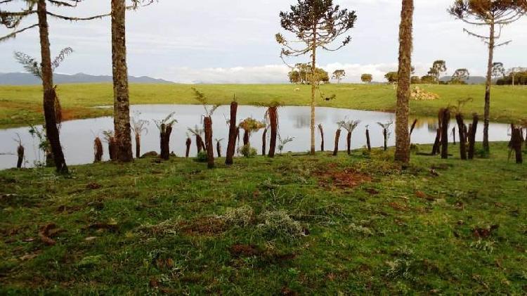 Rural de 600000 metros quadrados no bairro zona rural