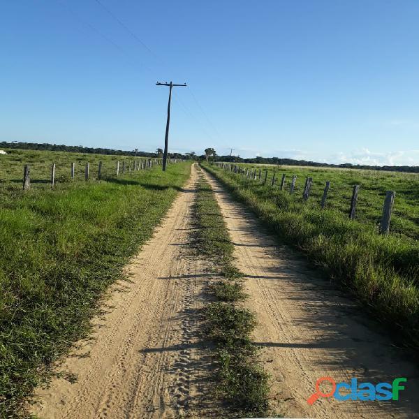 Fazenda em porto seguro 677 hectares