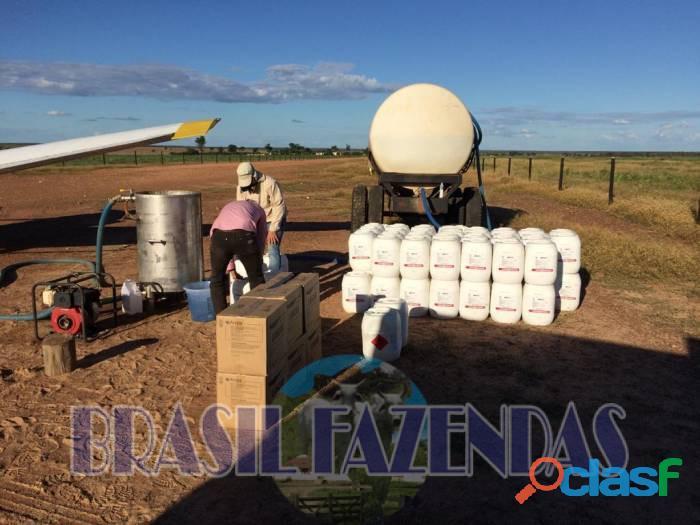 Fazenda na Bahia Oeste 21 mil hectares 5