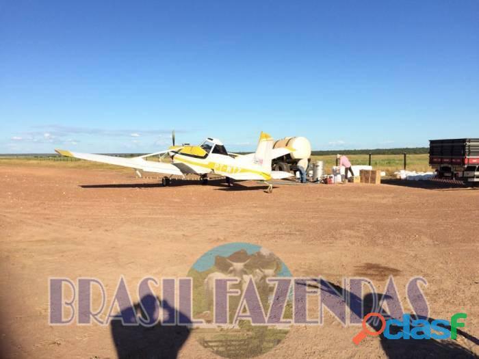 Fazenda na Bahia Oeste 21 mil hectares 6