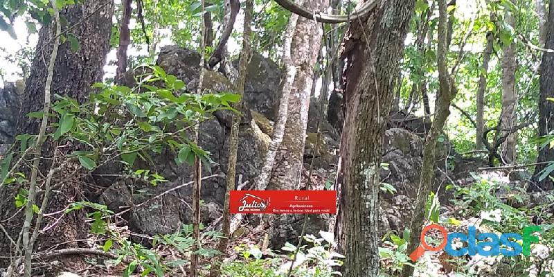 Vende se jazida de calcário dolomítico   próximo a formosa   goiás