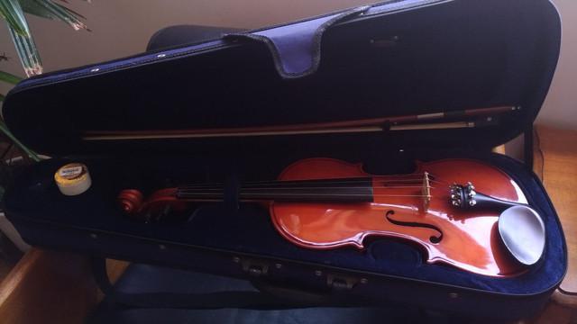 Violino eagle vk 441