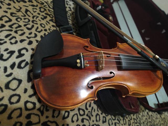 Violino mod guarnieri