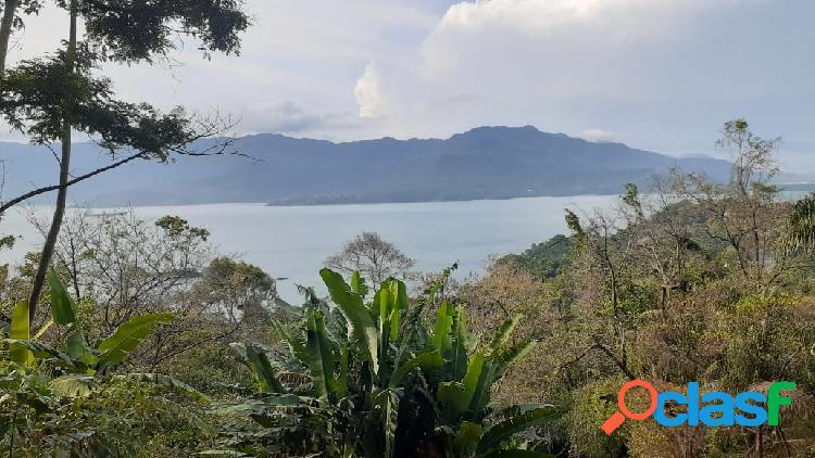 Terreno - venda - ilhabela - sp - praia grande