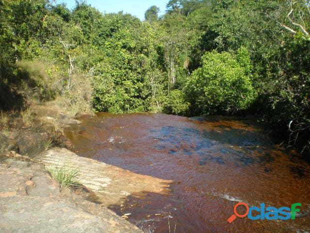 603 Alqs Plana Excelente Plantio de Soja Lagoa do TO 7