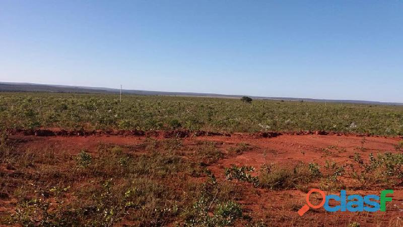 603 Alqs Plana Excelente Plantio de Soja Lagoa do TO 6