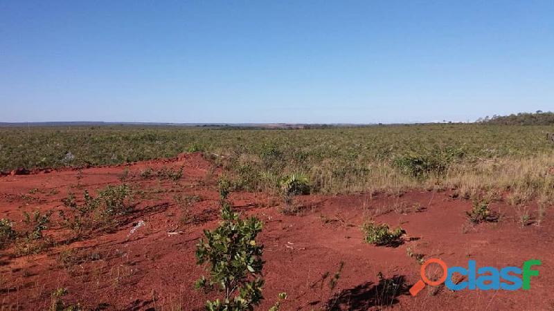 603 Alqs Plana Excelente Plantio de Soja Lagoa do TO 4