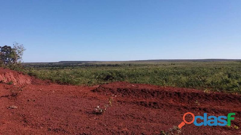 603 Alqs Plana Excelente Plantio de Soja Lagoa do TO 3