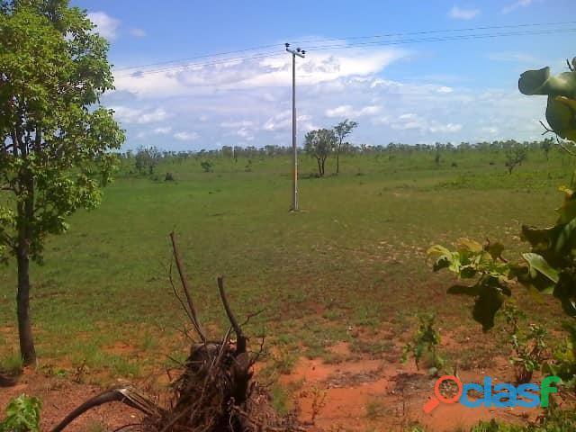 603 Alqs Plana Excelente Plantio de Soja Lagoa do TO 1