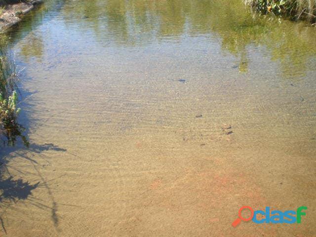 603 Alqs Plana Excelente Plantio de Soja Lagoa do TO 8