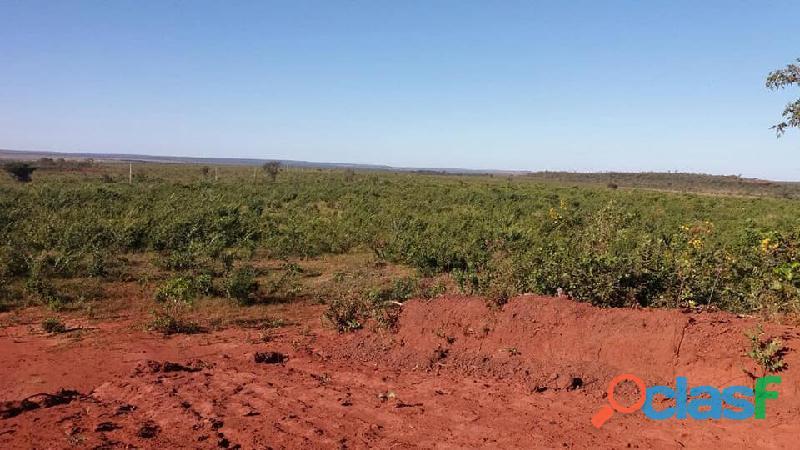 603 Alqs Plana Excelente Plantio de Soja Lagoa do TO 9