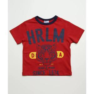 Camiseta infantil manga curta estampa frontal tam 1 <div