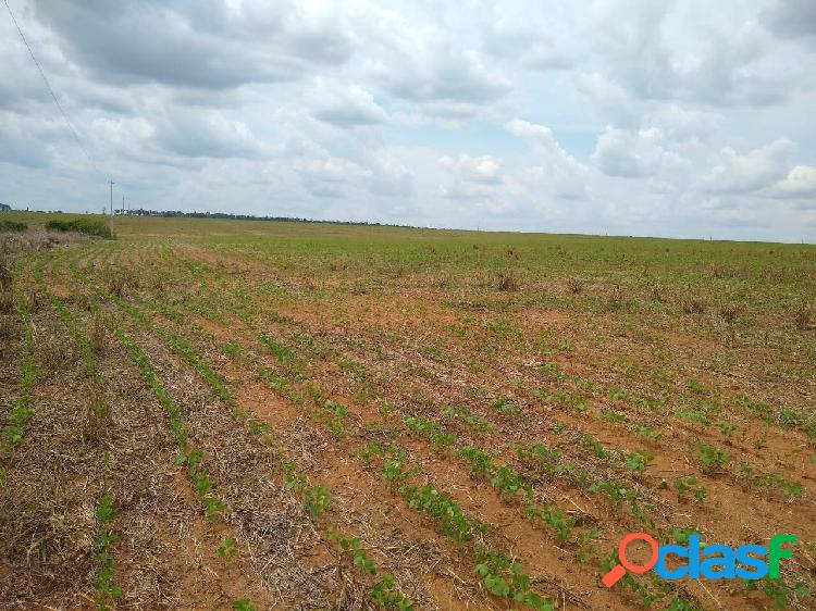 Terra para venda na gleba mercedes