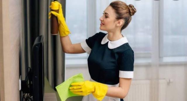 Trabalho de doméstica
