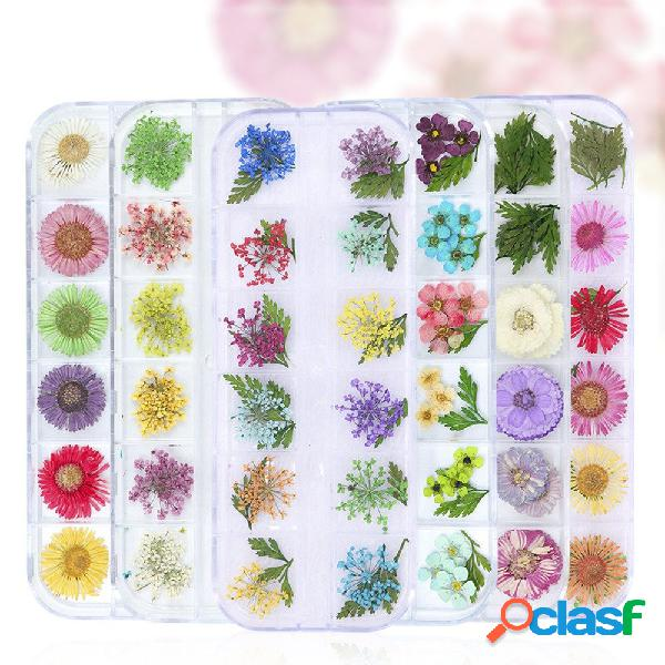 Unhas acessórios para flores de decoração 12-grade caixa moda unhas art flowers unhas art tool
