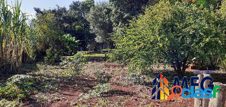Terreno no bosque dos eucaliptos