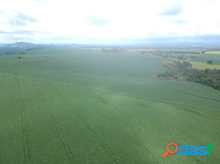 Fazenda de Soja em Coronel Macedo SP 3