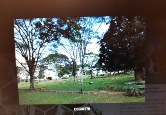 Jazigo no cemitério da paz - jardim morumbi