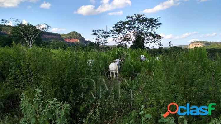 Fazenda 1.000 hectares para pecuária em dom aquino - mato grosso