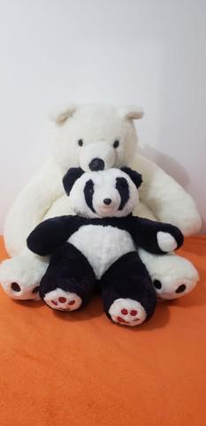 Urso polar e urso panda