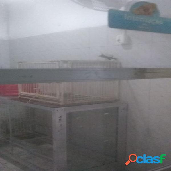 Clinica Veterinária e banho e tosa>Guaruja 2