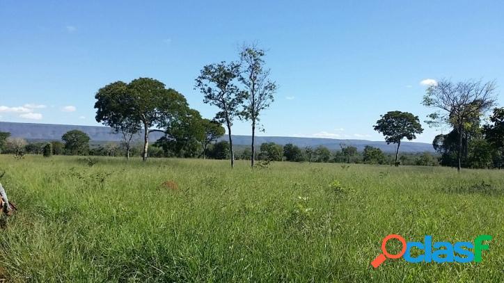 Fazenda a venda em brasilândia, santa fé de minas, mg para pecuária, cana