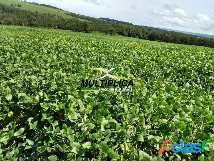 Fazenda uberlândia / agricultura - pecuária /101.64 ha /r$ 41.322,00 por ha