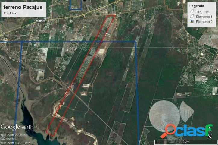 Terreno em pacajus - ce, com 116,1 hectares, dupla aptidão