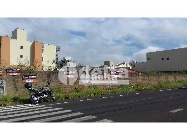 Terreno para alugar, 1600 m² por r$ 20.000,00 - vila santa