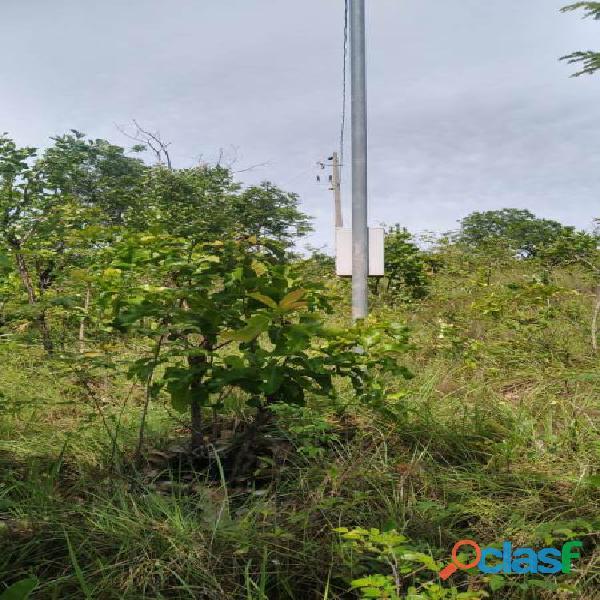 151 Alqs Pra Soja ou Gado Plana Água Permanente Ponte Alta do TO