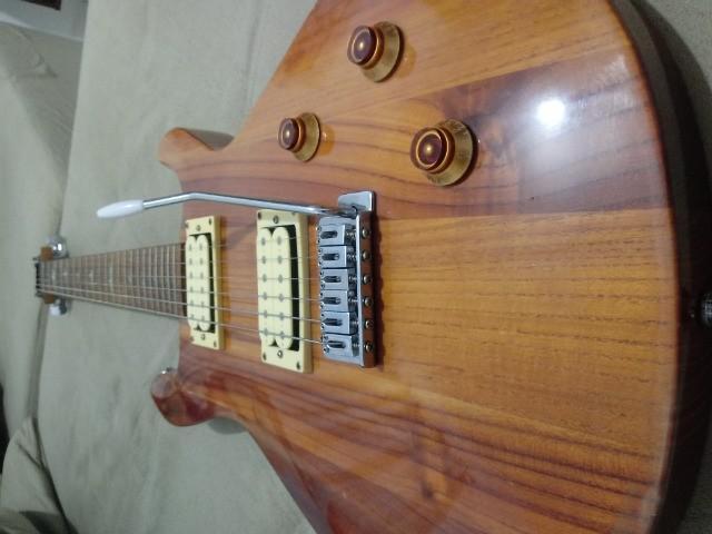 Guitarra t. johnson (promoção)