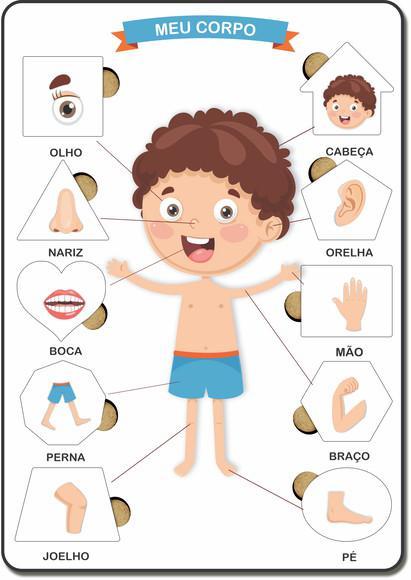 Brinquedo jogo educativo encaixe corpo humano menino madeira